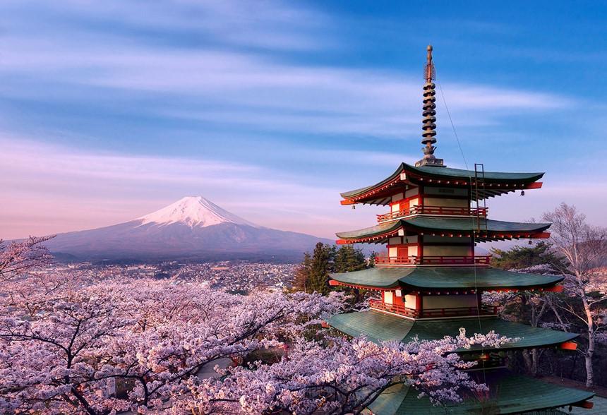 Tại sao nên vận chuyển tôm tươi đi Nhật bằng máy bay?