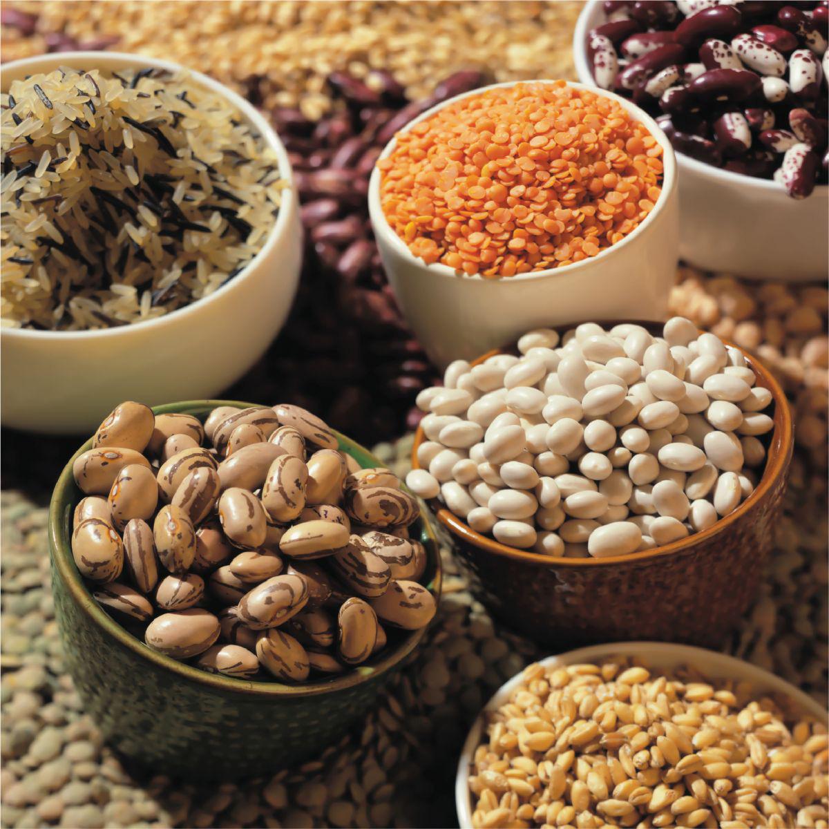Vận chuyển thực phẩm khô đi Châu Âu cước vận chuyển siêu ưu đãi